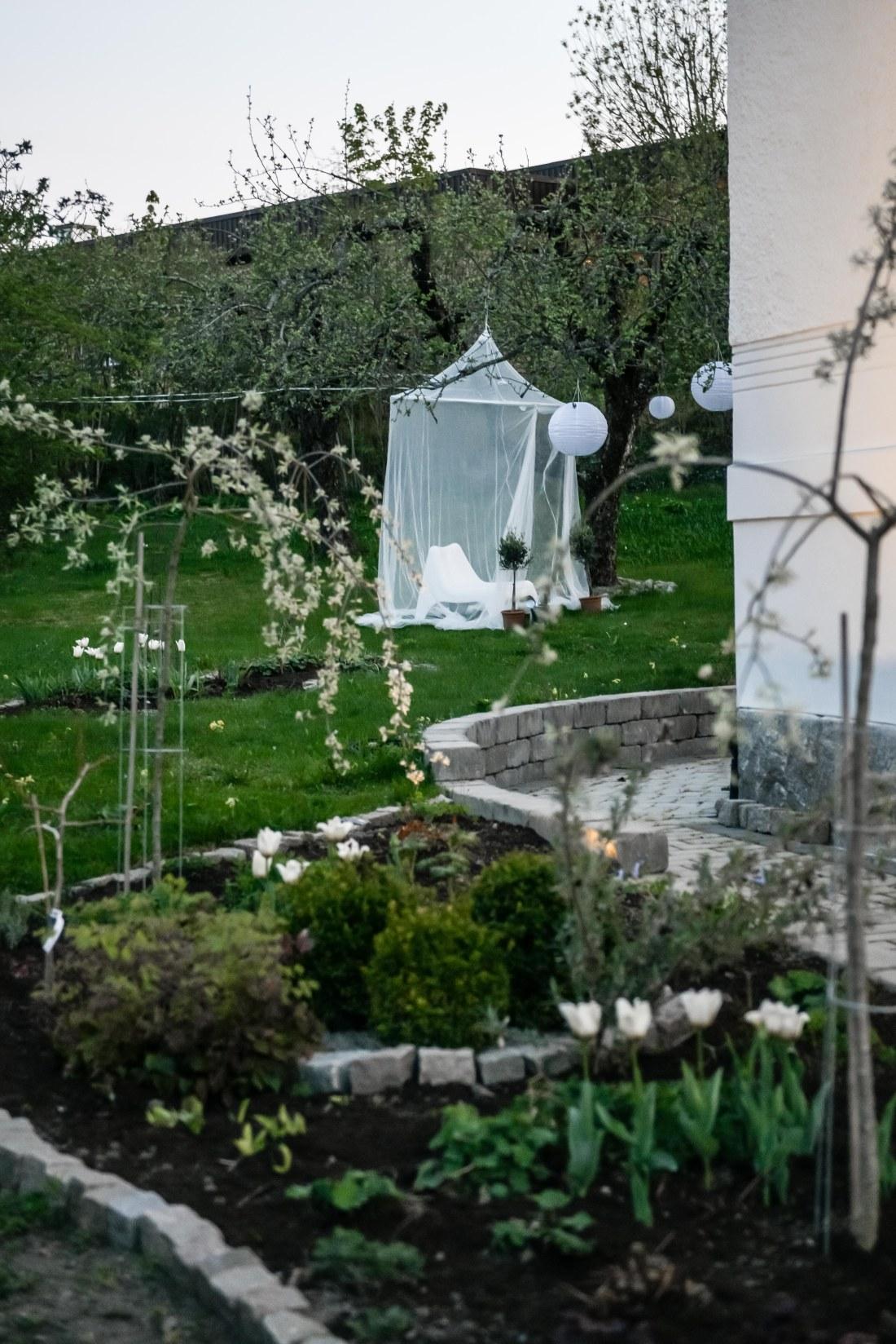 trädgård-6