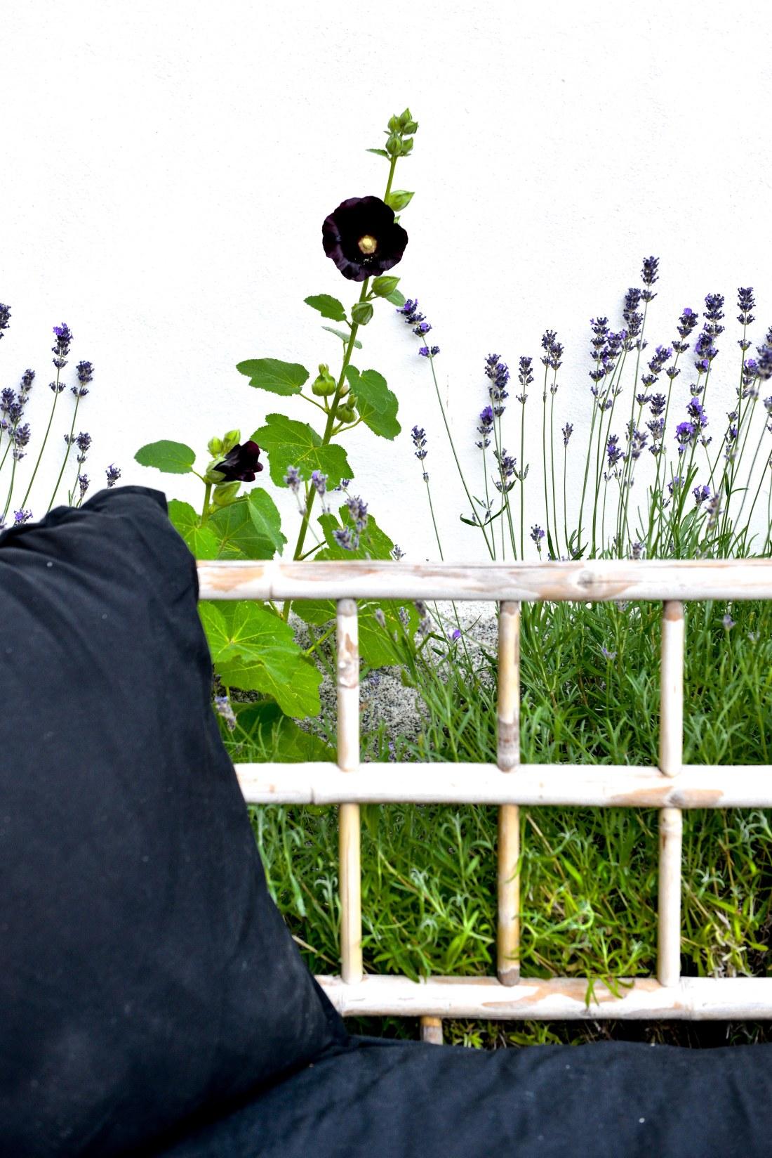 trädgård-15
