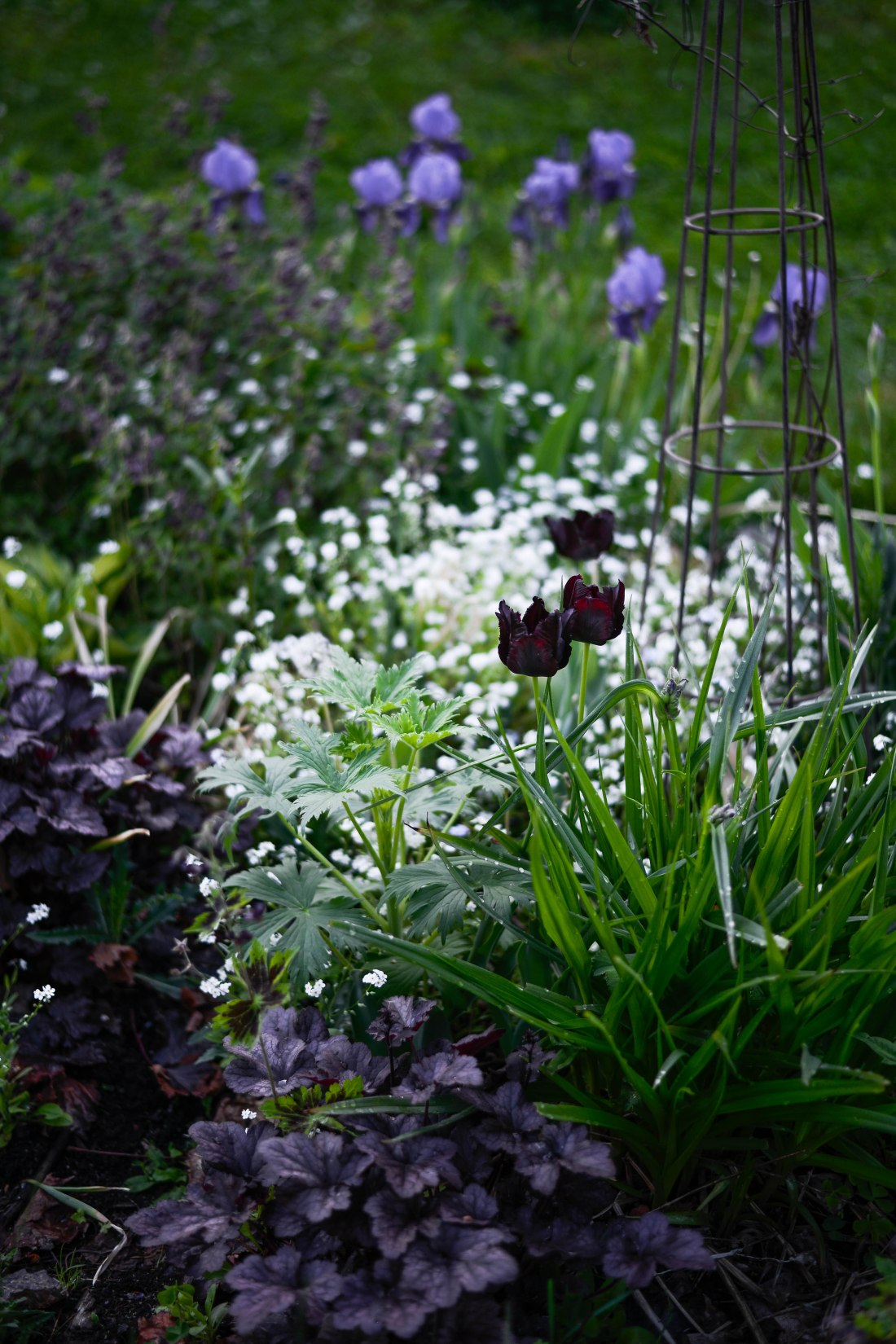 trädgård-3