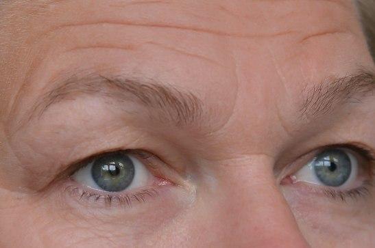 ögonbryn-2