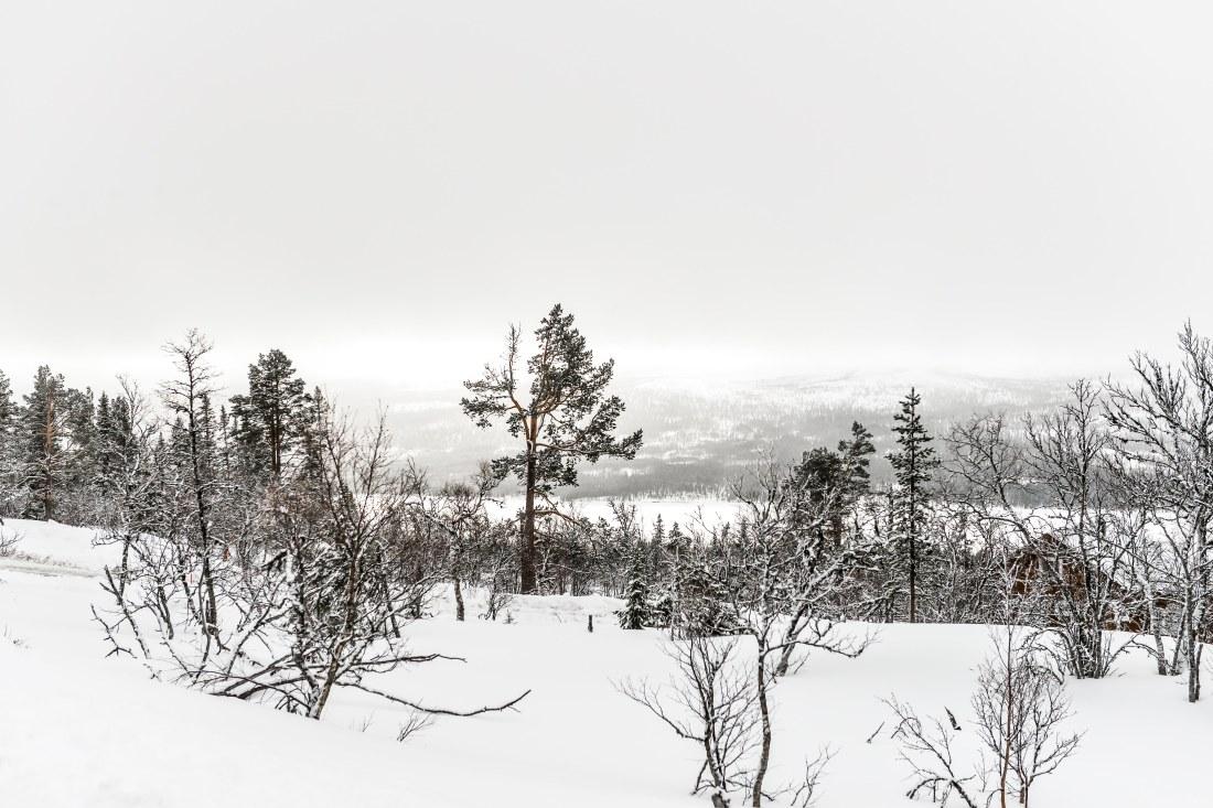 brf höglandet-11